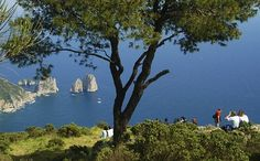 Capri, from the top of the Island - Italy