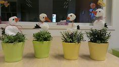 Martenizi Planter Pots