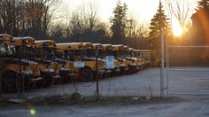 School buses having a nap on McMurray St.
