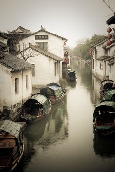 Suzhou, China - gorgeous city with a terrific silk museum (and store!) and the beautiful Humble Administrator's Garden - one of the most famous gardens in China