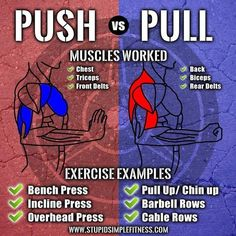Push vs Pull Workouts Infographic(Male Fitness Tips) Muscle Fitness, Fitness Tips, Health Fitness, Fitness Plan, Gain Muscle, Fitness Quotes, Workout Fitness, Fitness Goals, Sport Motivation