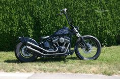 Softail Build by Twin Tec Switzerland, Twins, Motorcycle, Vehicles, Motorcycles, Car, Gemini, Twin, Motorbikes