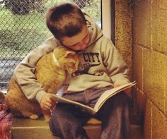 Boy reads to animal shelter cat. Both clearly benefitting! So sweet.