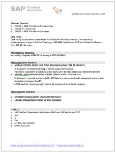 A Good Resume Template of a SAP Consultant with BE in Computers