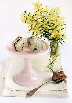 Macarons koala caramel by raspberri cupcakes Macarons, Yummy Treats, Yummy Food, Tasty, Caramel, Frankie Magazine, Lemon Syrup, Australian Food, Recipe Filing