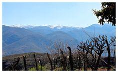 Frühling und Winter sind in der Region Almeria nie weit voneinander entfernt.