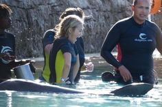 Carrie Underwood goes swimming with dolphins at The Cove, Bahamas. The singer took time out to relax after a performance at the Atlantis Resort.