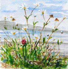Original Watercolour & Acrylic Painting: FLORAL/FLOWERS: COASTAL WILD DAISIES | eBay