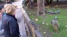 Salida sociocultural al Parque San Francisco de Oviedo desde el centro de día Vitalastur.