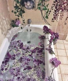 Lavender Aesthetic, Nature Aesthetic, Flower Aesthetic, Purple Aesthetic, Aesthetic Photo, Aesthetic Pictures, Ritual Bath, Pretty Flowers, Pretty Pictures