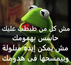 Arabic Memes, Funny Arabic Quotes, Arabic Funny, Sarcastic Quotes, Jokes Quotes, Cartoon Quotes, Kermit, Funny Relatable Memes, Funny Jokes