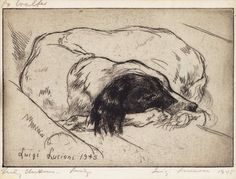 ' Enviable Satisfaction'   Luigi Lucioni (1900-1988)  etching of a dog curled up asleep ~ 1945