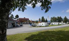 De stad Molde is zeer bekend om haar rozen en jazz festival. Kviltorp Camping is gelegen op 3km ten oosten van het centrum aan de oevers van het Fannefjord. De camping bevindt zich in een prachtig gebied, o.a. vanwege de mooie uitzichten op de bergen en fjorden. U kunt boten huren om op het fjord te gaan vissen. U kunt dagtrips maken naar het Eikesdal vallei en de Mardølafossen, Noord Europa's hoogste waterval. Maar ook de Atlanterhavsveien moet u gezien hebben. De camping beschikt over een…