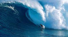 12 zajímavých filmů založených na skutečných událostech | ProNáladu.cz Waves, Outdoor, Outdoors, Ocean Waves, Outdoor Games, The Great Outdoors, Beach Waves, Wave