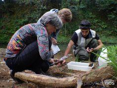 Sensibilización y participación ciudadana en el marco del Programa Playas, Ríos, Voluntariado y Custodia del Territorio