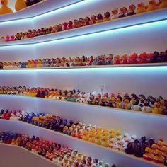 I've never seen so many rubber ducks #barcelona #duckshop #wtf #rubberducks by becca_meaton