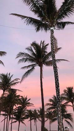 California palm tree wallpaper sky 57 New Ideas Tumblr Wallpaper, Tree Wallpaper Iphone, Sunset Wallpaper, Landscape Wallpaper, Aesthetic Iphone Wallpaper, Aesthetic Wallpapers, Wallpaper Backgrounds, Travel Wallpaper, Trendy Wallpaper