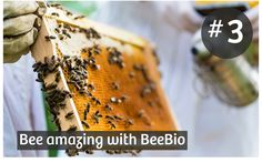 7 Reasons to add the Power of Bees to your Skincare #3