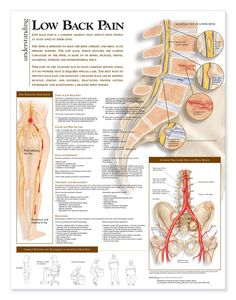Understanding and treating Low Back Pain @ drmalikov.com