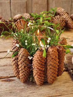Decoration Idea with Mistletoe Diy Christmas Decorations For Home, Pine Cone Decorations, Christmas Wreaths, Christmas Crafts, Christmas Ornaments, Pine Cone Art, Pine Cone Crafts, Pine Cones, Natural Christmas