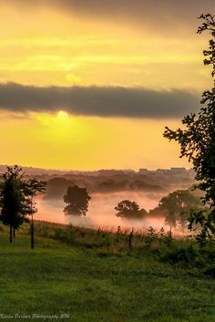 Valley Forge at sunrise #sunset sun sky yellow landscape amazing nature