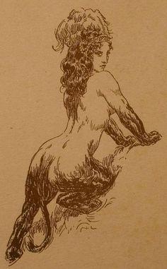 Illustrations, Illustration Art, Victorian Illustration, Norman Lindsay, Occult Art, Gravure, Creature Design, Mythical Creatures, Erotic Art