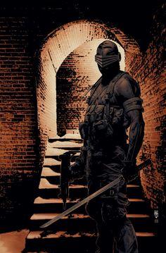 Snake Eyes from GI Joe reborn Batman Christian Bale, Thundercats, Comic Books Art, Comic Art, Book Art, Snake Eyes Gi Joe, Nostalgia, Storm Shadow, Photos Of Eyes