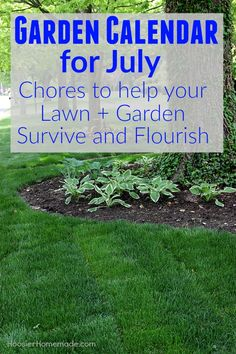 The Garden Calendar For July Is Packed With Chores That Will Make Your Lawn  And Garden Survive And Flourish During The Summer Heat That Comes Along  With The ...