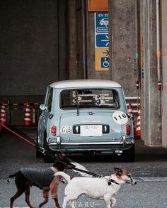 Mini Cooper Classic, Classic Mini, Classic Cars, Workshop Studio, Mini Me, Racing, Bike, Vehicle, Motorcycle