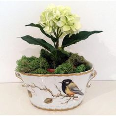 Anna's Favorites Oval Cachepot, Song Bird | Gracious Style