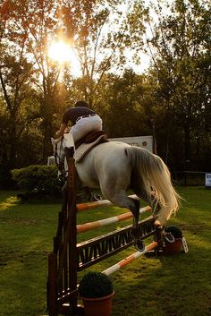 Equestrians need to have the concentration and ability to judge distance like a golfer, the strength and stamina of a hockey player, and the artistic flow and ability to make a hard thing look easy and elegant like a ballerina.