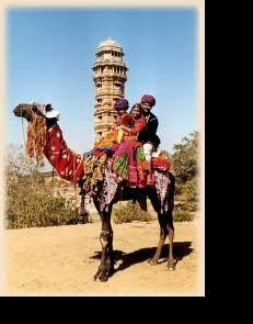 Experience camel ride on the deserts of Rajasthan