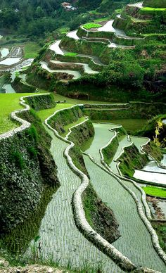 Les Philippines, Philippines Travel, Laos, Volcano World, Places To Travel, Places To See, Places Around The World, Around The Worlds, Banaue Rice Terraces