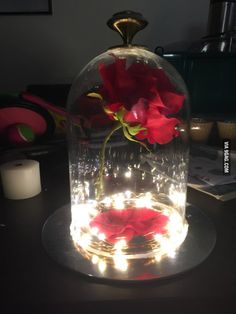 Made my sister an enchanted rose for Christmas.