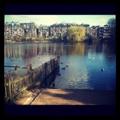 Hampstead Heath Park,London-the park I was amazed of :) day and night
