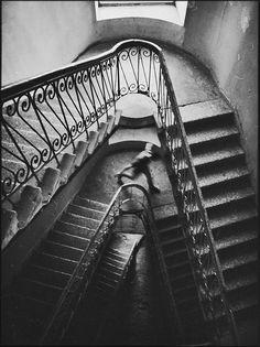 Damian Hovhannisyan #photography