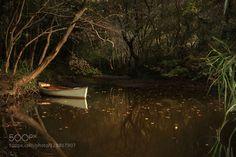 湿地 by xbchen #fadighanemmd