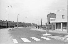 Ruysdaelstraat Heemskerk 1963