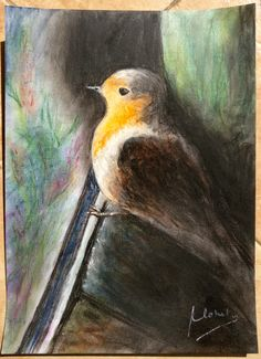 My first tryst with soft pastels done last week..... Happy with the results. A4 Ivory sheet 275 GSM.