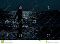 Silhouette Of Young, Slim, Woman Walking In The Sea Under The Moonlight Stock Image - Image of freedom, life: 112204971 Freedom Life, Happy Images, Moonlight, Sexy Women, Walking, Happiness, Silhouette, Slim, Lifestyle