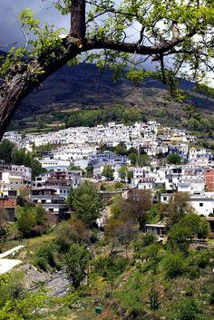 Trevelez, La Alpujarra,  Granada, Andalucia, España