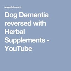 Dog Dementia reversed with Herbal Supplements - YouTube