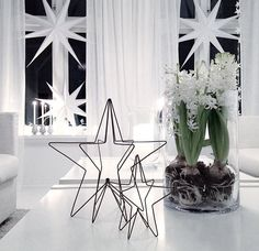 Black and white Christmas star next to Hyazynth - Xmas - Christmas