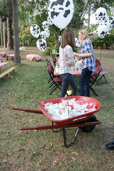 Drinks in a wheel barrow and cow balloons