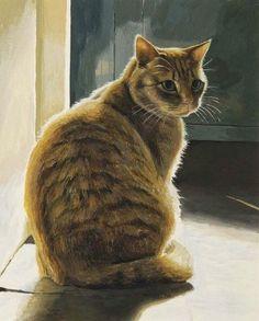 O gato tem a virtude do silêncio - Henri Brunel