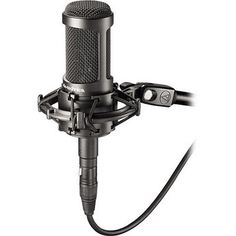 Audio-Technica AT2050 multi-pattern condenser microphone. Great as drum overhead microphone!
