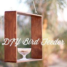 DIY Bird Feeder | The Happy Hunters