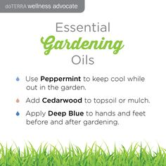 Also, use Terrashield to repel insects when you are out.   #doterra #essentialoils #doterranorge #eteriskeoljer  http://www.bewellbenatural.com/essential-oils  http://bewellbenatural.com/doterra-norge/?lang=nb