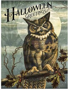 Timeless by Design Brown & Blue Vintage Owl 'Halloween Greetings' Canvas Photo Halloween, Vintage Halloween Images, Halloween Owl, Halloween Prints, Halloween Pictures, Holidays Halloween, Happy Halloween, Halloween Decorations, Halloween Poems
