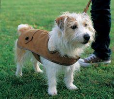 DIY tweed dog coat